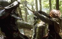 [ Aragorn Battles ]