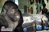 King Kong in China