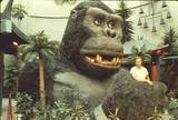 1983 KONG Party