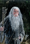 First Place - Gandalf the Grey